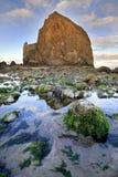 Roche de meule de foin à marée basse Photo libre de droits