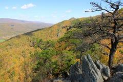 Roche de Sénèque dans l'automne - les Appalaches - la Virginie Occidentale, Etats-Unis Images libres de droits