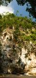 roche de singe de caverne Photographie stock libre de droits