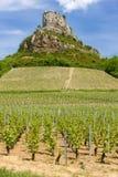 Roche de Solutre avec des vignes Images libres de droits