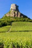 Roche de Solutre avec des vignes Photos stock