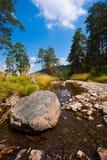 Roche en été d'horizontal de fleuve de montagne Photo libre de droits