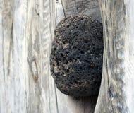 Roche en pierre incorporée dans une texture en bois Image libre de droits