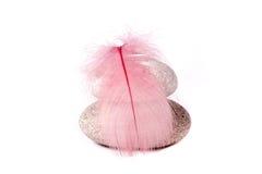 Roche et clavette rose Image libre de droits