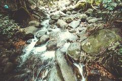 Roche et eau Photos libres de droits