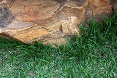 Roche et herbe Photos libres de droits