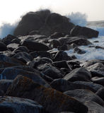 Roche et marée Images stock