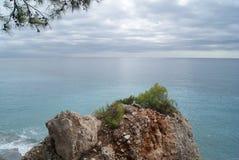 Roche et pins sur la plage photos libres de droits