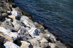 Roche et rivière brouillée en journée Image stock