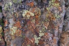 Roche européenne d'alpes avec le lichen Fond naturel photo libre de droits