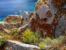 Roche gris-clair de granit avec le lichen brun-rougeâtre et les fleurs jaunes contre la mer bleue image stock