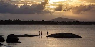 Roche-houblonnage au coucher du soleil sur la plage de la Reine, Bowen photo libre de droits