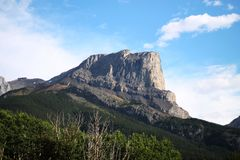 Roche Miette Mountain Royalty Free Stock Photos