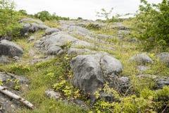 Roche Moutonnee στον ασβεστόλιθο Στοκ Εικόνα