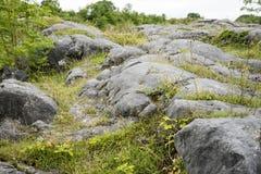 Roche Moutonnee na pedra calcária Fotografia de Stock Royalty Free