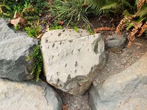 Roche ou rocher grise avec de petits trous irréguliers photo libre de droits