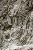 Roche, pierre photos stock
