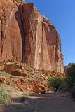 Roche rouge Cliff Rising du plancher de canyon photos libres de droits