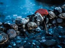 Roche rouge près de la mer Image libre de droits