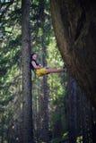 Roche surplombante s'élevante de grimpeur masculin, mode de vie actif extérieur image stock