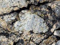 Roche texturisée de plage Photo libre de droits
