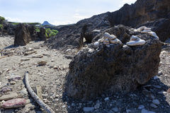 Roche volcanique à la côte du Curaçao images stock