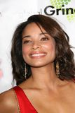 Rochelle Aytes Royalty Free Stock Photography