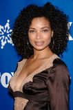 Rochelle Aytes Stock Photos