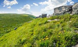 Rochers énormes sur le pré sur l'arête de montagne Photo libre de droits