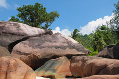 Rochers de basalte Baie Lazare, Mahe, Seychelles Photos stock