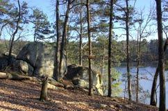 Rochers de Lakeside de lac Allatoona, parc d'état de montagne d'agrostide blanche, la Géorgie, Etats-Unis Images libres de droits