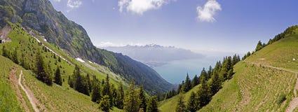 Rochers De Naye jest górą Szwajcarscy Alps, przegapia Jeziornego Genewa Fotografia Royalty Free