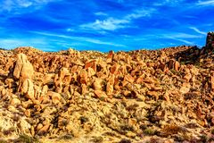 Rochers pointillant le paysage de désert image libre de droits