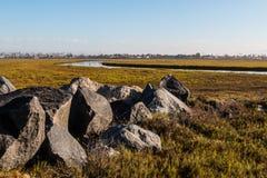 Rochers sur la réservation de Tijuana River National Estuarine Research Image libre de droits