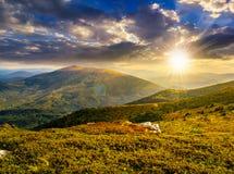 Rochers sur le pré de montagne au coucher du soleil Photographie stock libre de droits