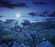 Rochers sur le pré de montagne avec des pissenlits la nuit Photos stock