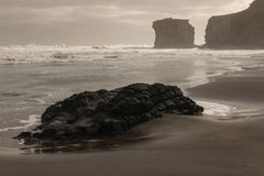 Rochers volcaniques sur la plage de Muriwai Photo stock