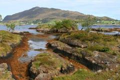 Roches à la côte Image libre de droits