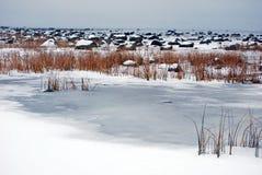 Roches au bord de la mer à l'hiver Photo stock