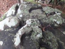 Roches avec des bordures de vert de mousse Photos stock