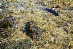 Roches brunes colorées, montagne de l'Île d'Elbe, l'eau, fond abstrait naturel Photographie stock libre de droits