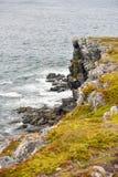 Roches déchiquetées outre de côte de Terre-Neuve photographie stock libre de droits