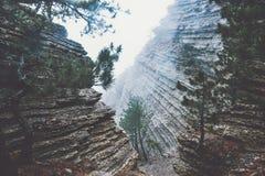 Roches dans Forest Landscape brumeux Photographie stock libre de droits