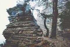 Roches dans la vue scénique brumeuse de Forest Landscape Photo stock