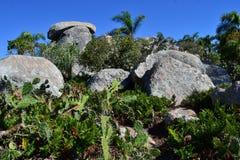 Roches dans le dessus de la colline Images stock