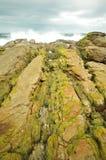 Roches de bord de la mer Photo libre de droits
