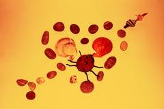 Roches de coeur avec un insecte d'amour dedans Photo stock