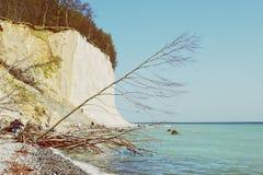 Roches de falaise de craie d'île de Rugen à Sassnitz et à x28 ; Germany& x29 ; images stock