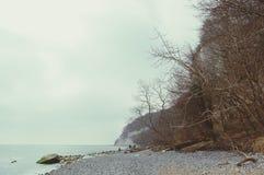 Roches de falaise de craie d'île de Rugen au parc national Jasmund Photographie stock libre de droits