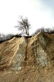 Roches de falaise de craie d'île de Rugen au parc national Jasmund Image stock